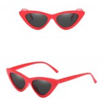 12 Colors Available Fashion Triangle Frame Women Cat Eye Sunglasses